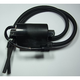 Bobine d'allumage Tourmax Suzuki DL650 V-Strom