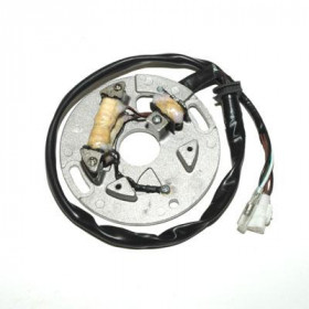 Stator ELECTROSPORT Yamaha WR250Z/YZ250