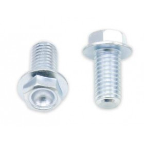 Vis à bride BOLT tête hexagonale 10mm M8x1,25x16mm